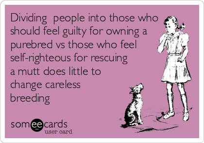Dividing  people into those who should feel guilty for owning a purebred vs those who feel self-righteous for rescuing   a mutt does little to cha