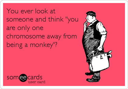 "You ever look at someone and think ""you are only one chromosome away from  being a monkey""?"