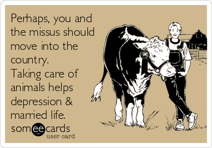 Perhaps, you and the missus should move into the country. Taking care of animals helps depression & married life.