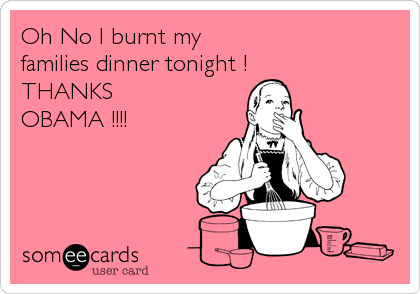 Oh No I burnt my families dinner tonight ! THANKS OBAMA !!!!