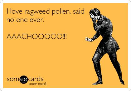 I love ragweed pollen, said no one ever.  AAACHOOOOO!!!