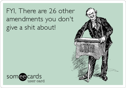 FYI, There are 26 other  amendments you don't  give a shit about!