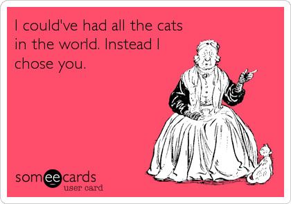 I could've had all the cats in the world. Instead I chose you.