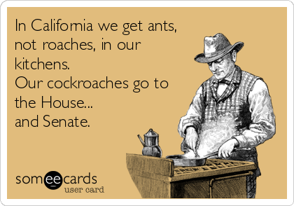 In California we get ants, not roaches, in our kitchens. Our cockroaches go to the House... and Senate.