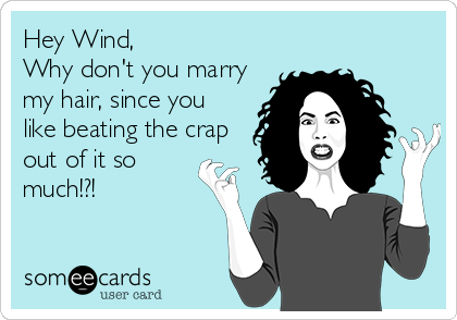 Hey Wind, Why don't you marry my hair, since you like beating the crap out of it so much!?!