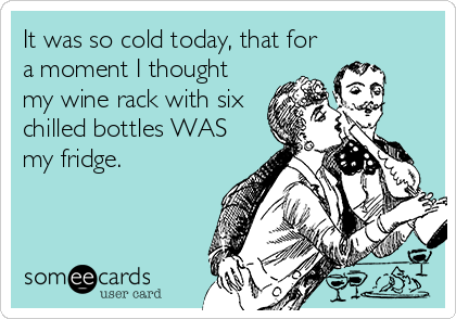 It was so cold today, that for a moment I thought my wine rack with six chilled bottles WAS my fridge.
