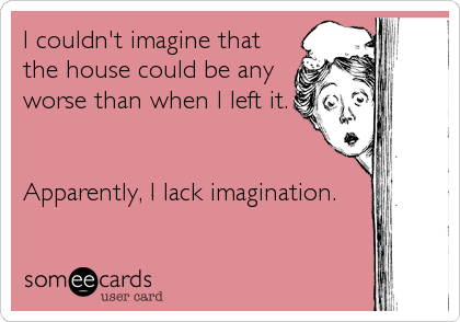 I couldn't imagine that the house could be any worse than when I left it.   Apparently, I lack imagination.