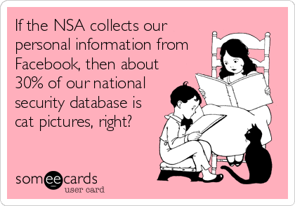 If the NSA collects our personal information from Facebook, then about 30% of our national security database is cat pictures, right?