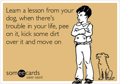 Learn a lesson from your dog, when there's trouble in your life, pee on it, kick some dirt over it and move on
