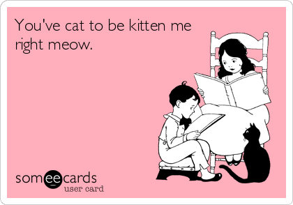 You've cat to be kitten me right meow.