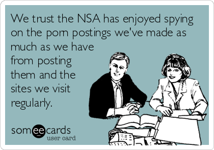 We trust the NSA has enjoyed spying on the porn postings we've made as much as we have from posting them and the sites we visit regularly.
