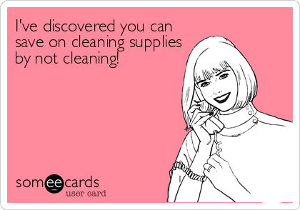 I've discovered you can save on cleaning supplies by not cleaning!