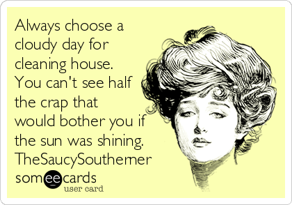 Always choose a cloudy day for cleaning house. You can't see half the crap that would bother you if the sun was shining. TheSaucySoutherner