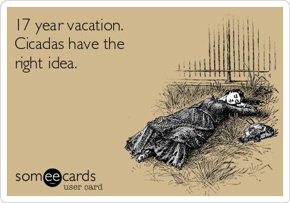 17 year vacation.  Cicadas have the     right idea.