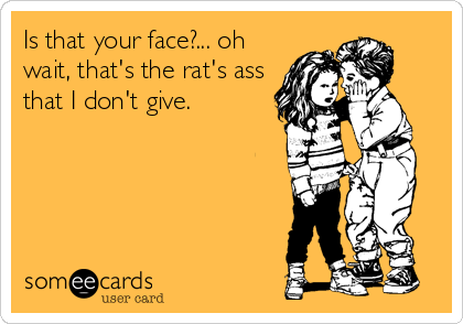 Is that your face?... oh wait, that's the rat's ass that I don't give.