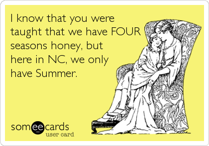 I know that you were taught that we have FOUR seasons honey, but here in NC, we only have Summer.