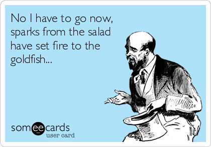 No I have to go now, sparks from the salad have set fire to the goldfish...