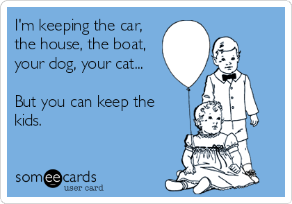 I'm keeping the car, the house, the boat, your dog, your cat...  But you can keep the kids.