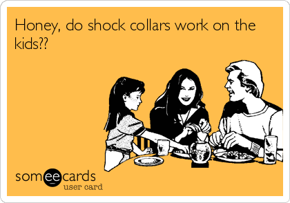 Honey, do shock collars work on the kids??