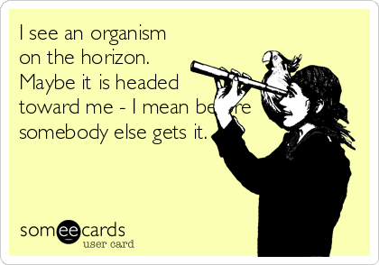 I see an organism on the horizon. Maybe it is headed toward me - I mean before somebody else gets it.