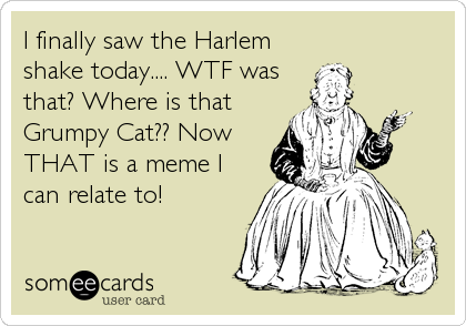 I finally saw the Harlem shake today.... WTF was that? Where is that Grumpy Cat?? Now THAT is a meme I can relate to!