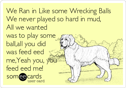 We Ran in Like some Wrecking Balls We never played so hard in mud, All we wanted was to play some ball,all you did was feed eed me,Yeah you, you feed eed me!