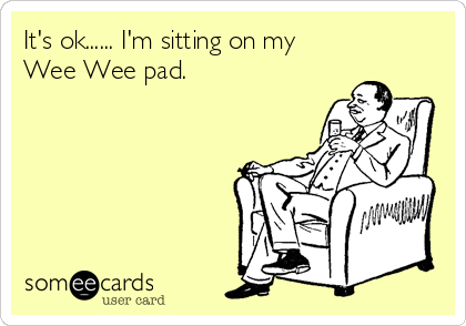 It's ok...... I'm sitting on my Wee Wee pad.