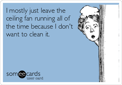 I mostly just leave the ceiling fan running all of the time because I don't want to clean it.