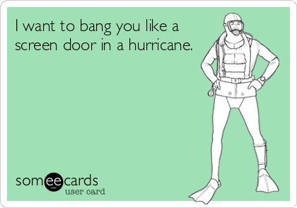 I want to bang you like a screen door in a hurricane.  sc 1 st  Someecards & I want to bang you like a screen door in a hurricane. | Flirting Ecard