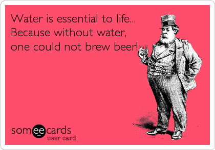 Water is essential to life...       Because without water, one could not brew beer!