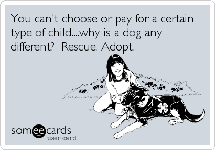 You can't choose or pay for a certain type of child....why is a dog any different?  Rescue. Adopt.