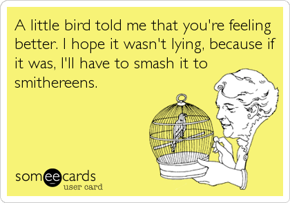 A little bird told me that you're feeling better. I hope it wasn't lying, because if it was, I'll have to smash it to smithereens.