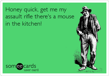 Honey quick, get me my assault rifle there's a mouse in the kitchen!