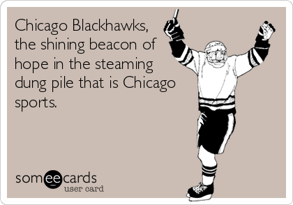 Chicago Blackhawks, the shining beacon of hope in the steaming dung pile that is Chicago sports.