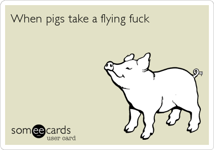 When pigs take a flying fuck