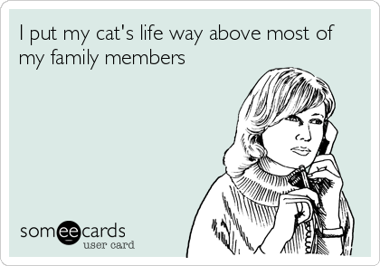 I put my cat's life way above most of my family members
