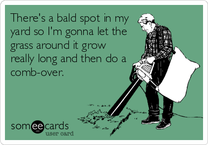 There's a bald spot in my yard so I'm gonna let the grass around it grow really long and then do a comb-over.