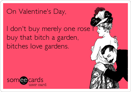 On Valentine's Day,   I don't buy merely one rose I buy that bitch a garden, bitches love gardens.