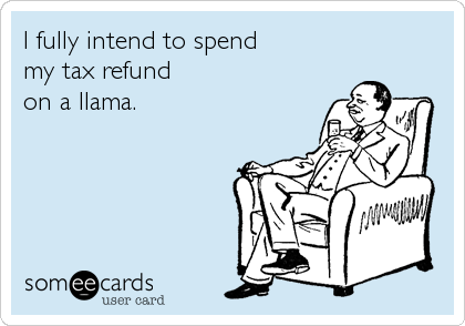 I fully intend to spend  my tax refund  on a llama.
