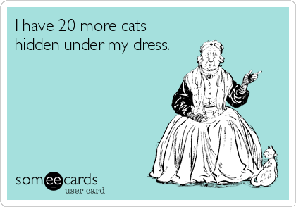 I have 20 more cats hidden under my dress.