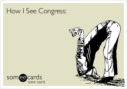 How I See Congress: