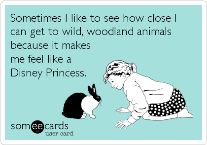 Sometimes I like to see how close I can get to wild, woodland animals because it makes me feel like a Disney Princess.