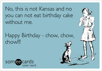No, this is not Kansas and no you can not eat birthday cake without me.  Happy Birthday - chow, chow, chow!!!