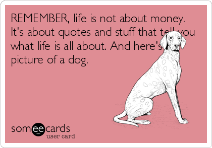 REMEMBER, life is not about money. It's about quotes and stuff that tell you what life is all about. And here's a picture of a dog.