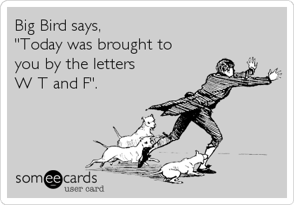 """Big Bird says,  """"Today was brought to you by the letters W T and F""""."""