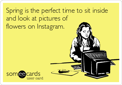 Spring is the perfect time to sit inside and look at pictures of flowers on Instagram.