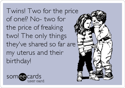 Twins! Two for the price of one!? No- two for the price of freaking two! The only things they've shared so far are my uterus and their<br /%