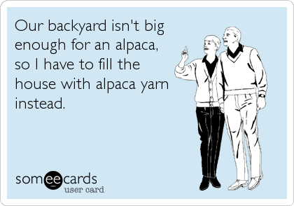 Our backyard isn't big enough for an alpaca, so I have to fill the house with alpaca yarn instead.