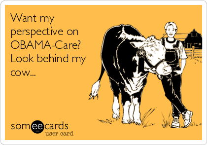 Want my perspective on OBAMA-Care?  Look behind my cow...
