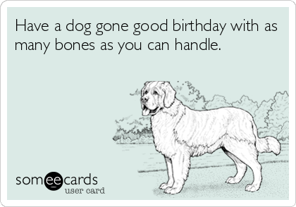 Have a dog gone good birthday with as many bones as you can handle.